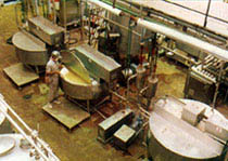 Processing vats used in shrikhand production at the Sugam Dairy, Vadodra